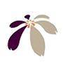 紫錐花運動(開新分頁)